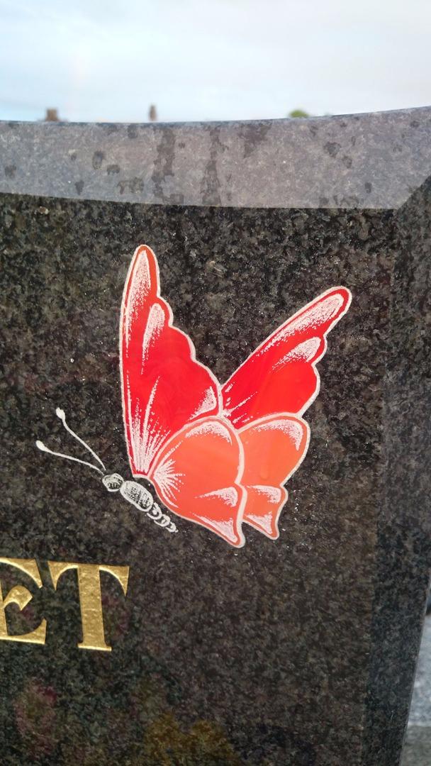 Gravure et coloration d'un papillon